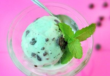 mint chocolate chip ice cream vita mix