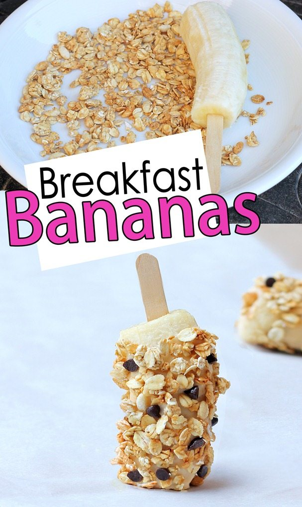 Breakfast Banana Pops - Easy snack idea for summer, from @choccoveredkt... Ingredients: 4 peeled bananas, popsicle sticks, 3 tbsp chocolate chips, 1/2 cup... Full recipe: http://chocolatecoveredkatie.com/2012/06/20/breakfast-banana-pops/