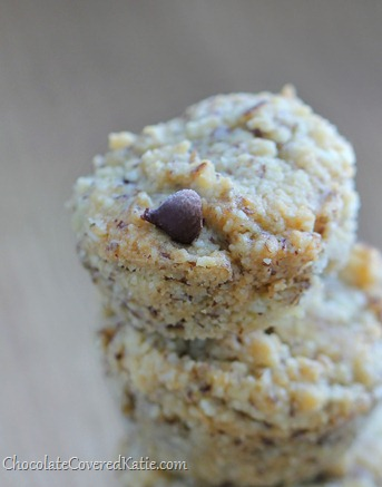 Flourless Chocolate Chip Mini Muffins