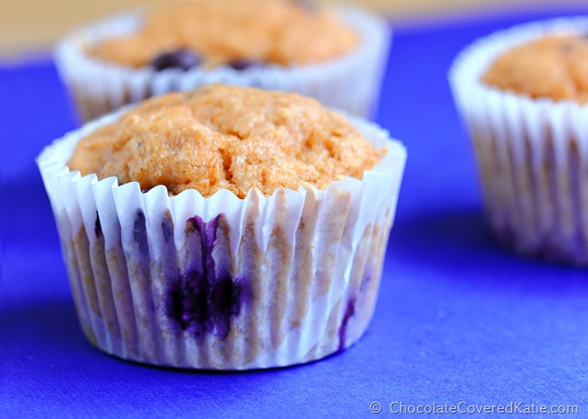 Fat Free Blueberry Muffins