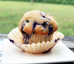 vegan-blueberry-muffin_thumb