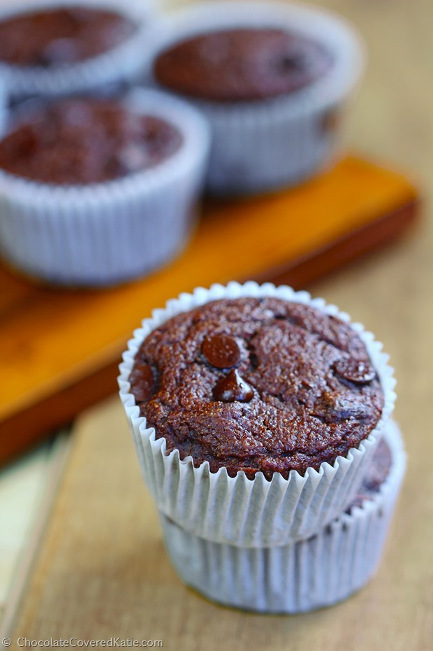 Low Fat Chocolate Muffins - Recipe uses yogurt instead of oil... These were so rich, and just 100 calories each! http://chocolatecoveredkatie.com/2015/01/20/low-fat-chocolate-muffins-100-calories/ @choccoveredkt