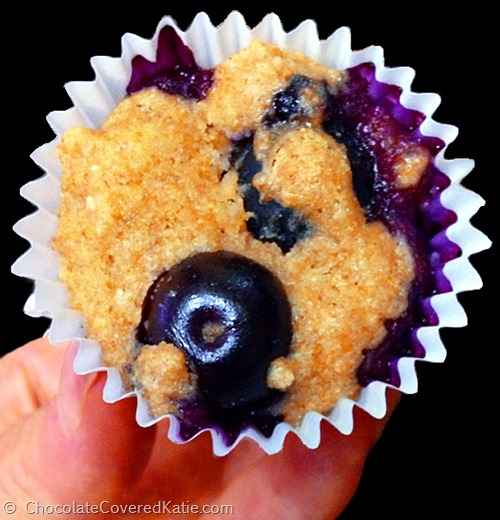 Blueberry Mini Muffin