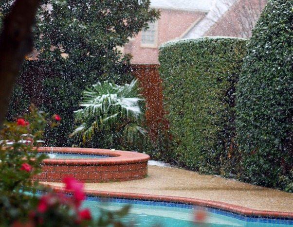 snow in texas