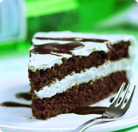 Frosted Mint Chocolate Double Layer Cake - Chocolate Covered Katie